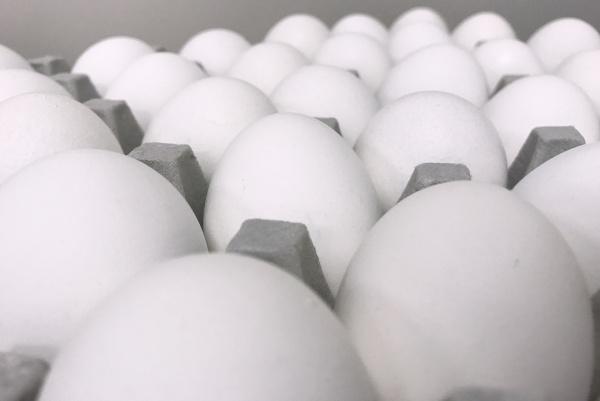 Eier klein Weiß